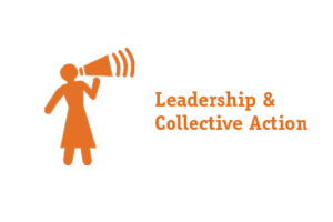 leadership_and_collective_action